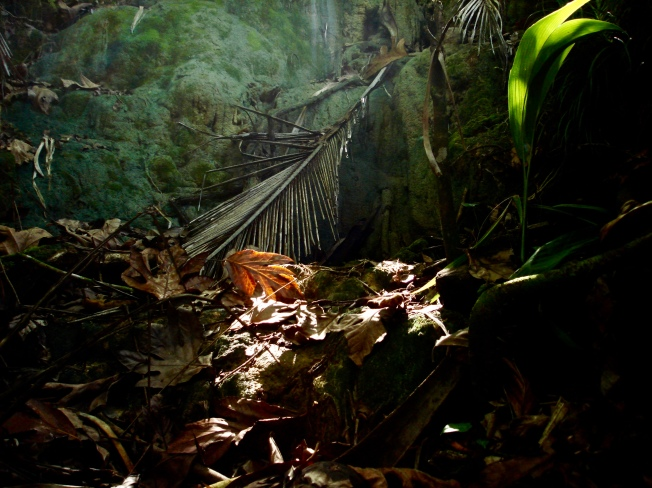 ?Togcha waterfall onset wet season
