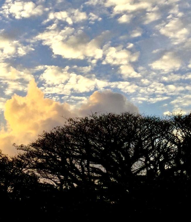 cloudscape.monumental silhouette